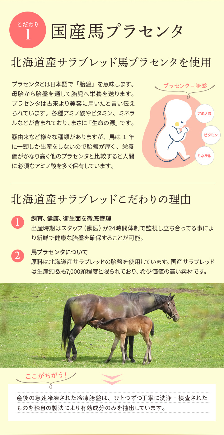 国産馬プラセンタ